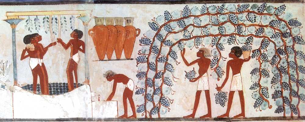 Tomb of Nakht - wine making